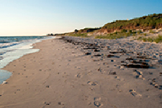 West Falmouth protected coastal habitat