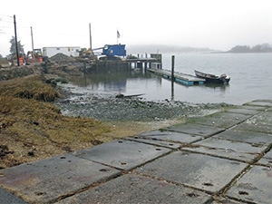 West Falmouth Dock rebuild
